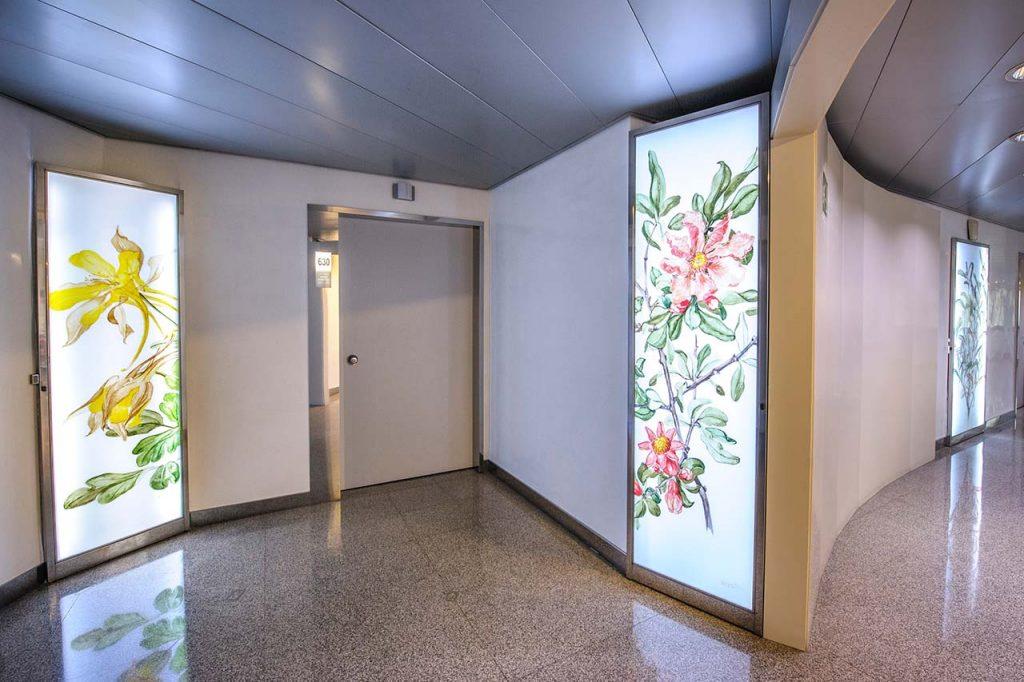Fotografía-Botánica-Colette-Martin-Clínica-Rotger-Hospital-Mallorca-Sexta-Planta
